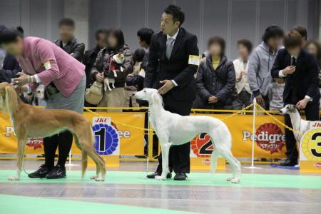 kanagawaFCI20110220_IMG_0156.jpg