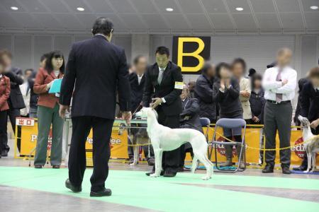 kanagawaFCI20110220_IMG_0164.jpg