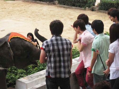 thai8_convert_20081122235754.jpg