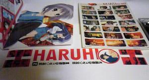 hatuhi2_4.jpg