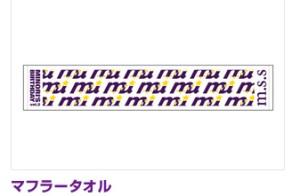 mss11.jpg