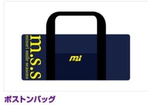 mss15.jpg
