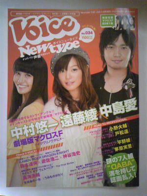 voice11.jpg