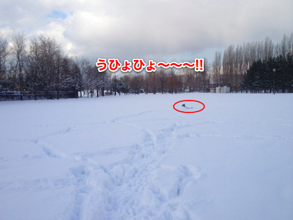IMG_1472-2.jpg