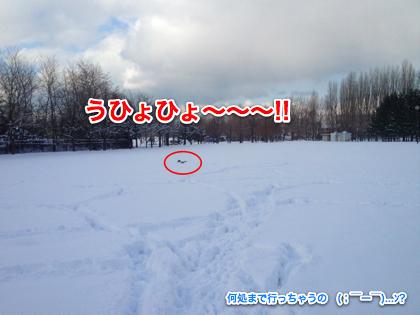 IMG_1473-2.jpg