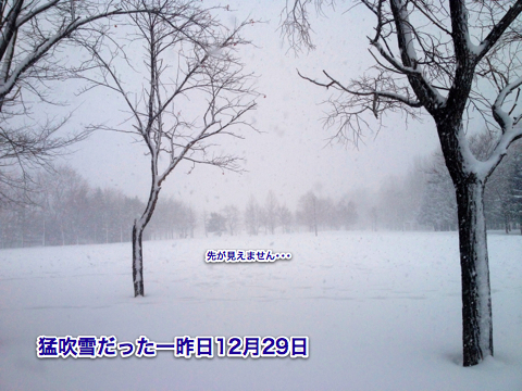 IMG_2252-2.jpg