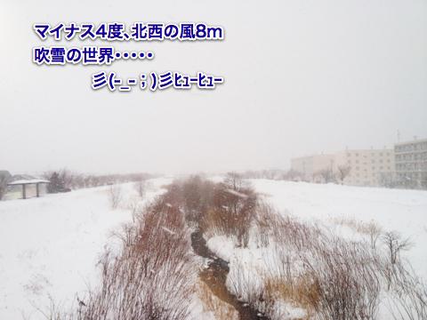 IMG_2807_20120104003700.jpg