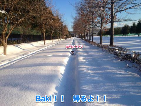 IMG_2876_20120108101353.jpg