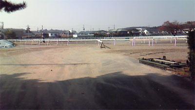 JRA競走馬総合研究所
