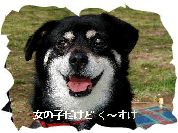 20020325_kuusuke1.jpg