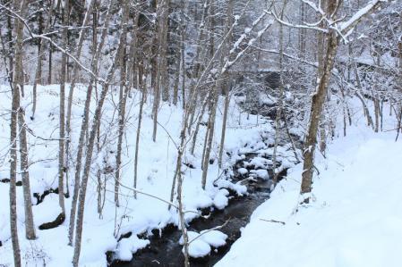 雪と川_800