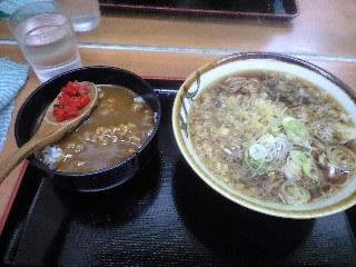 kameshima_1.jpg