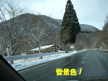 20051213121228.jpg