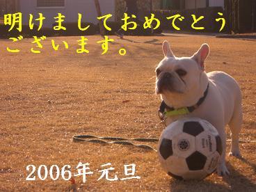 20060101215306.jpg