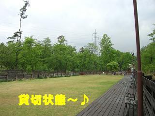 20060509104007.jpg