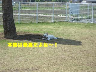 20060511114847.jpg