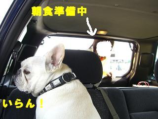 gashuku-4.jpg
