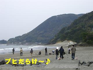gashuku-52.jpg