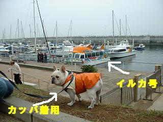 gashuku-61.jpg