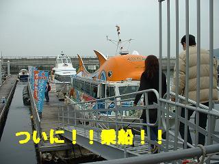gashuku-62.jpg