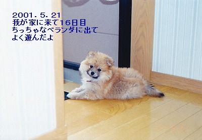 s-IMG_0003.jpg