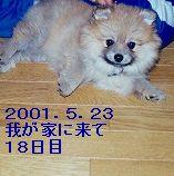 s-IMG_0007.jpg