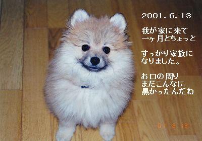 s-IMG_0009.jpg