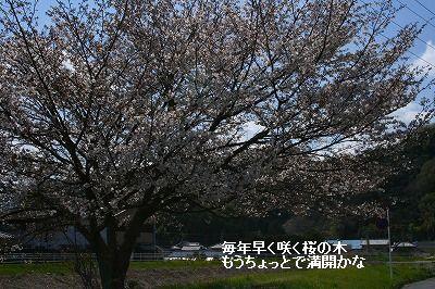 s-IMG_3762.jpg