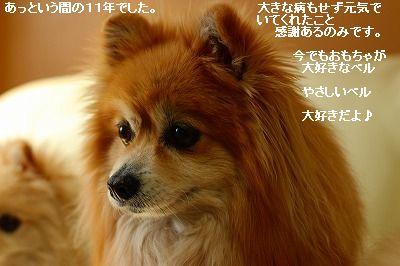 s-IMG_4928.jpg