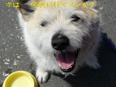 3yZ_slUl.jpg