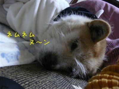 F2KpheXu.jpg
