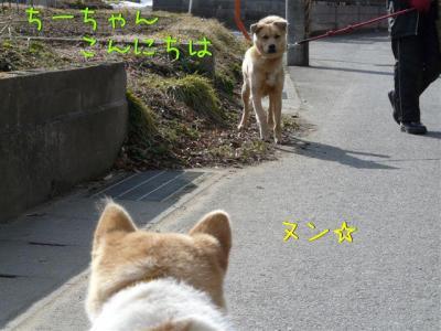 Jxhax4jG.jpg