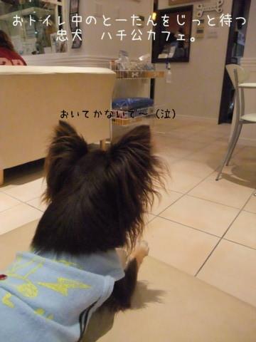 2009_09120024-001.jpg