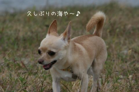 2009_09220005-001.jpg