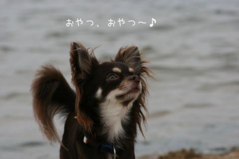 2009_09220019-001.jpg