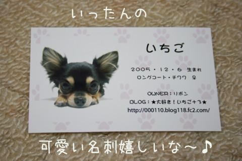 IMG_3280-001.jpg