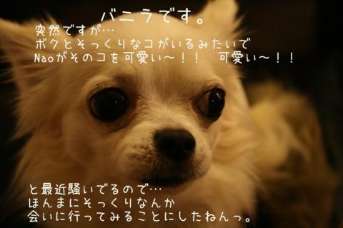 IMG_5216-001.jpg
