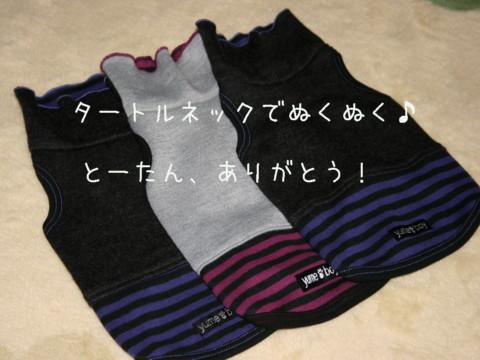IMG_5787-001.jpg