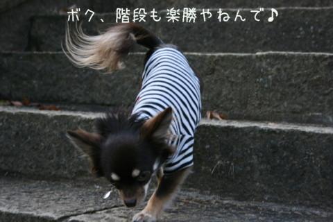 IMG_5990-001.jpg