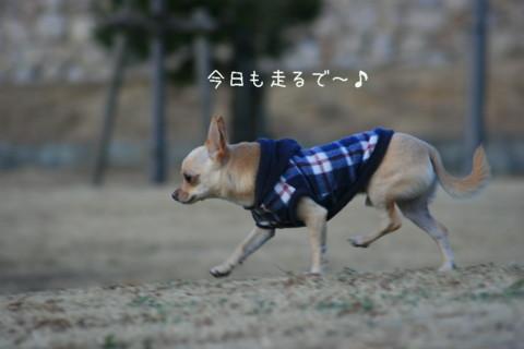IMG_6238-001.jpg