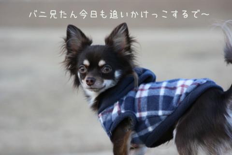 IMG_6249-001.jpg