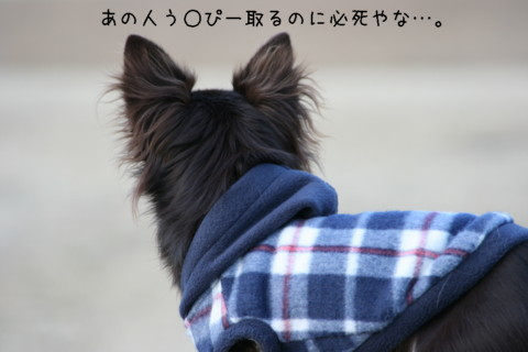 IMG_6250-001.jpg