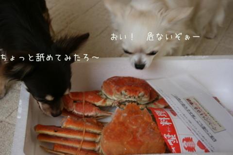 IMG_7580-001.jpg