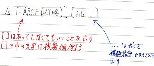 man_sy.jpg