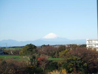 富士山(三浦海岸から)