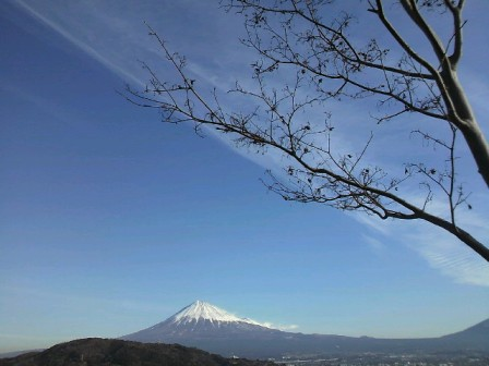 富士川 富士山