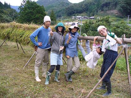 稲刈り14
