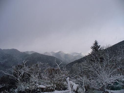 クリスマス高原