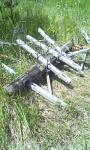 jailtrip0610200725.jpg