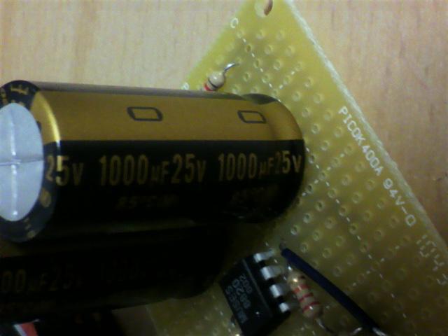 P1000117.jpg